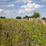 Nieuwe natuur in het RivierPark Maasvallei: Excursie met MaasVerkenner