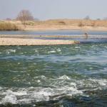De Maas en haar grillen: Excursie met MaasVerkenner
