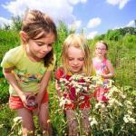 Het RivierPark Maasvallei in geuren en kleuren: excursie met MaasVerkenner