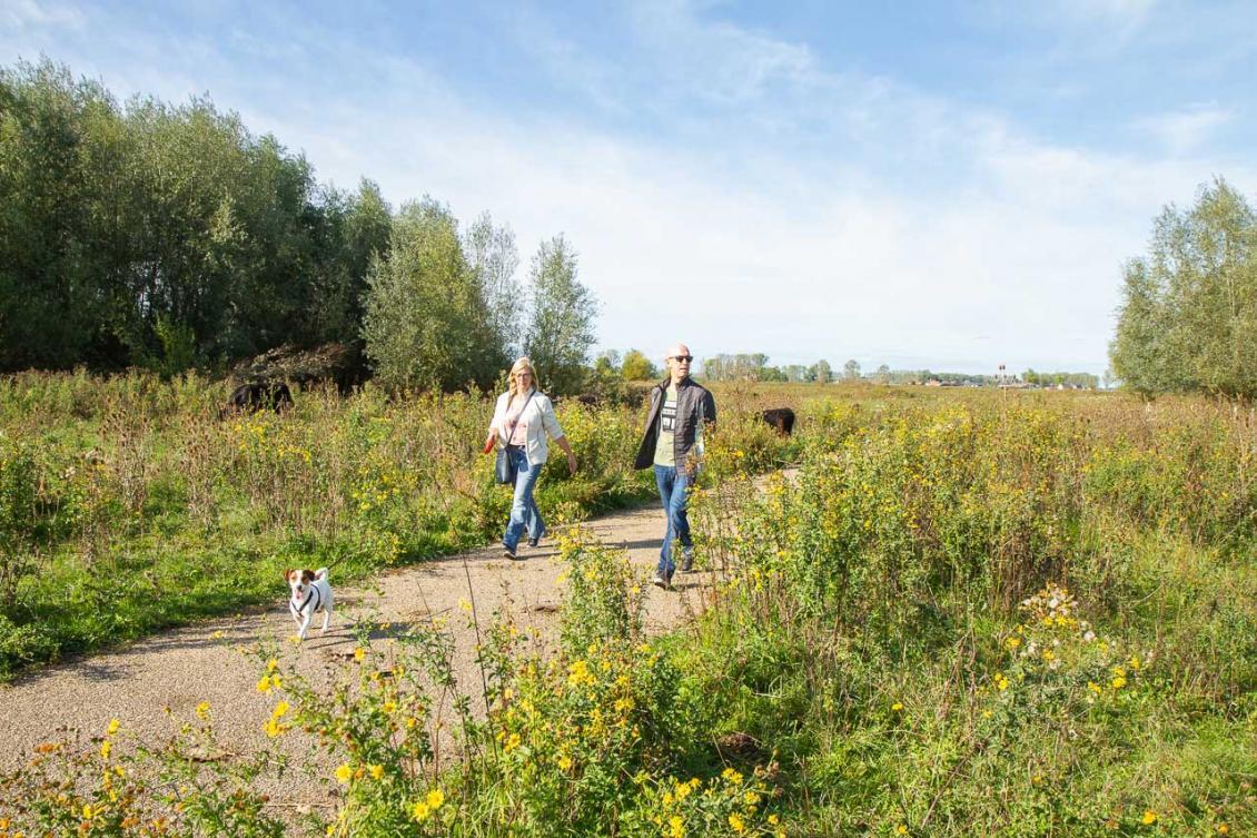 Wandelaars met hondje