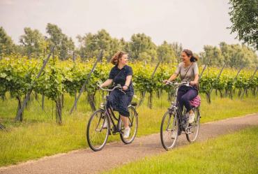 Fietsen langs wijndomeinen in de Maasvallei