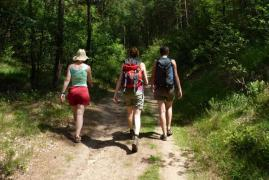 Wanderkarten