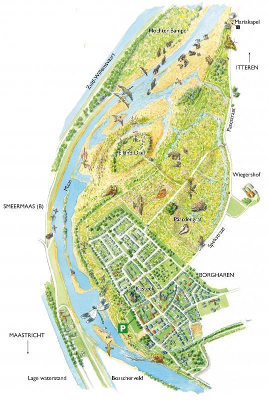 Detailkaart wandelgebied Borgharen